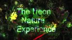 The Neon Nature Experience