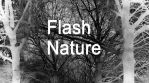Flash Nature