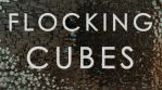 Flocking Cubes