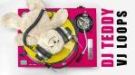 DJ Teddy - VJ Loops Pack